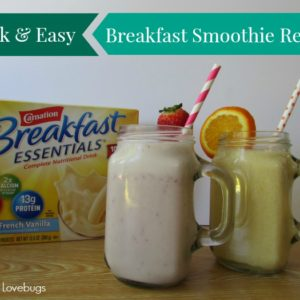 Quick & Easy Breakfast Smoothie Recipes