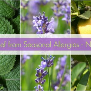Get Relief from Seasonal Allergies - Naturally!