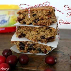 Cranberry Pecan Oatmeal Bars