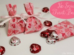 Valentines Day No Sew Treat Bags