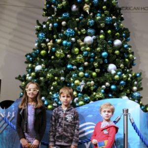 Holidays at The Aquarium of the Pacific