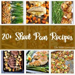 20+ Sheet Pan Recipes - Perfect for busy weeknight dinners!
