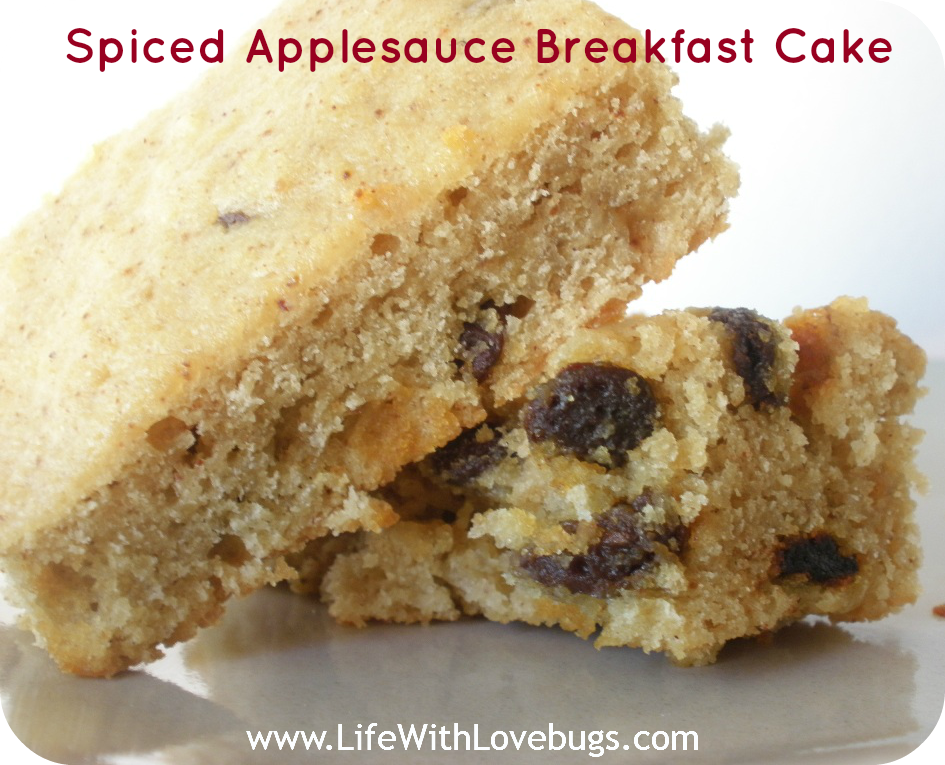 Spiced Applesauce Breakfast Cake - Life With Lovebugs